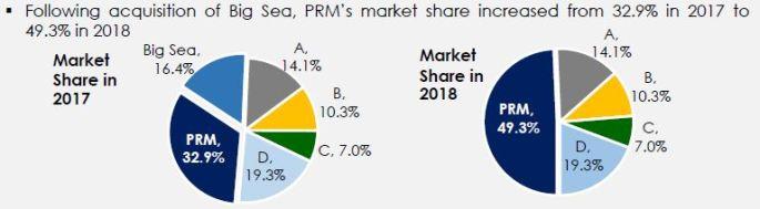 Domestic route market share.JPG